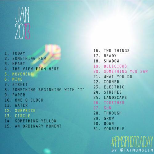 Jan 2013 Photo Prompts