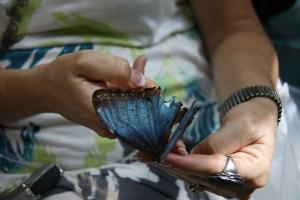Key West 2012 397
