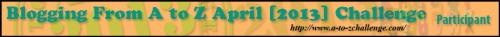 A2Z-2013-BANNER-900_zps1a85732a