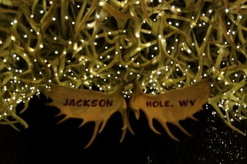 2014, Feb Jackson Hole, Wyoming 091